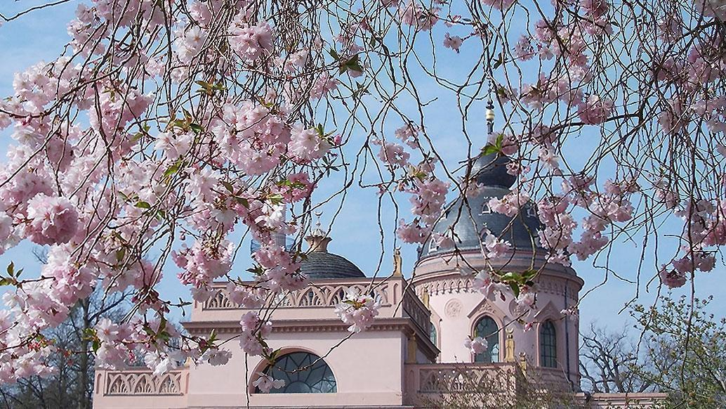 Moschee im Schlossgarten Schwetzingen; Foto: Staatliche Schlösser und Gärten Baden-Württemberg, Wolfgang Schröck-Schmidt