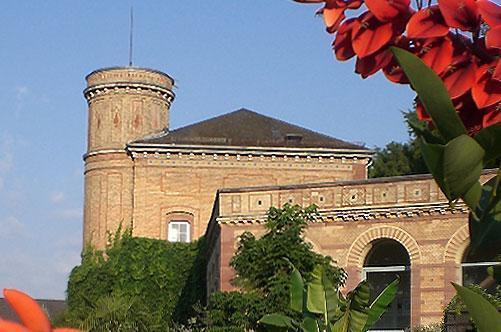 Botanischer Garten Karlsruhe; Foto: Service Center
