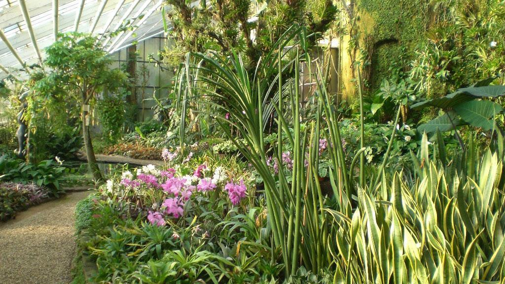 Warmhaus des Botanischen Gartens Karlsruhe; Foto: Staatliche Schlösser und Gärten Baden-Württemberg, Thomas Huber