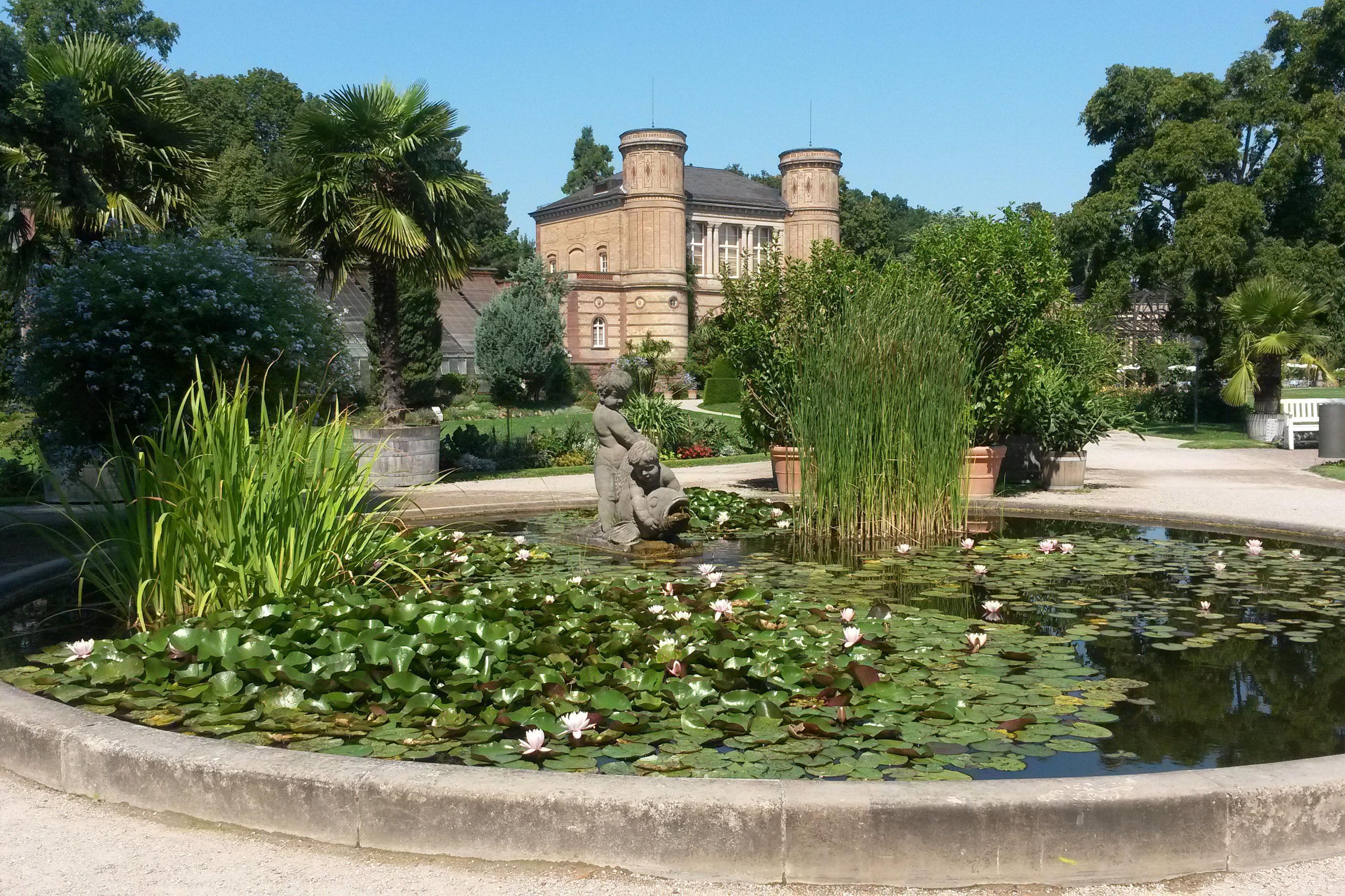 Botanischer Garten Karlsruhe; Foto: Staatsanzeiger für Baden-Württemberg, Anja Stangl