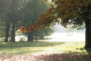 Herbst im Garten von Schloss Favorite Rastatt