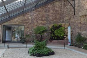 Sommerausstellung im Kalthaus, Botanischer Garten Karlsruhe; Foto: Jochen Hautzdorf