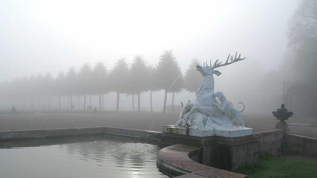 Hirschgruppe im Nebel, Schlossgarten Schwetzingen; Foto: Staatliche Schlösser und Gärten Baden-Württemberg, Ursula Wetzel