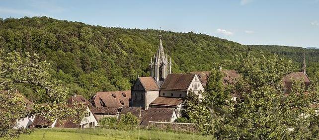 Kloster und Schloss Bebenhausen, Außen, Gesamtanlage aus Entfernung