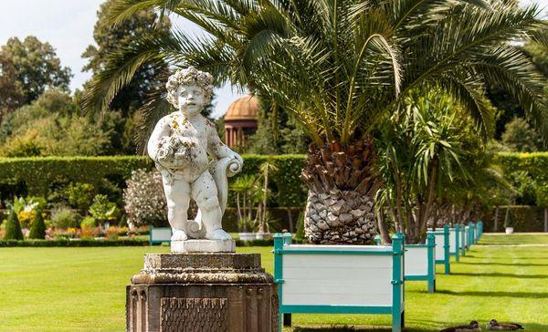 Schloss und Schlossgarten Schwetzingen, Ananas