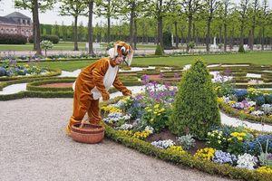 Schloss und Schlossgarten Schwetzingen, Event, Osterhoppeln