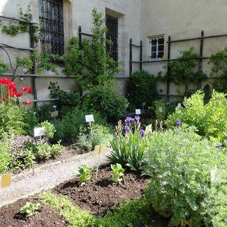 Der Kräutergarten im Kloster Bebenhausen