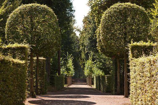 Schlossgarten Schwetzingen; Foto: Staatliche Schlösser und Gärten Baden-Württemberg, Ursula Wetzel