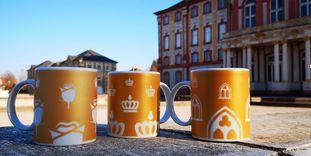 Schloss Bruchsal, Tassen vor dem Schloss