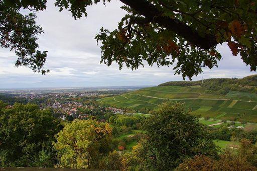 Ausblick von der Burgruine Badenweiler