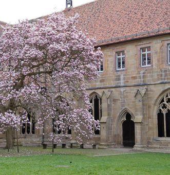 Kloster Maulbronn. Kreuzgarten