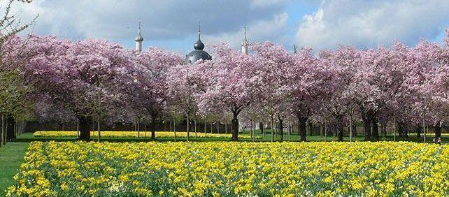 Schloss und Schlossgarten Schwetzingen, Schlossgarten im Frühling